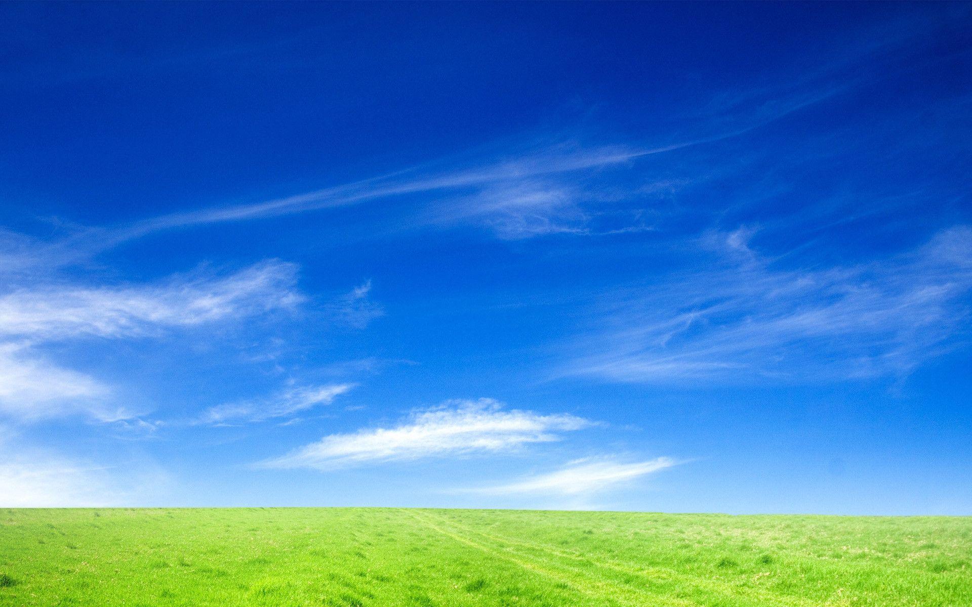 Rdc Environnement Notre Entreprise Rdc Environment