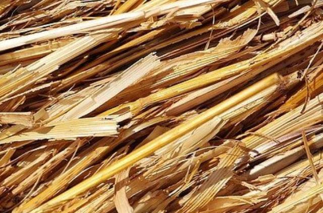 Analyse coût-bénéfice des biocarburants issus de déchets et résidus de biomasse